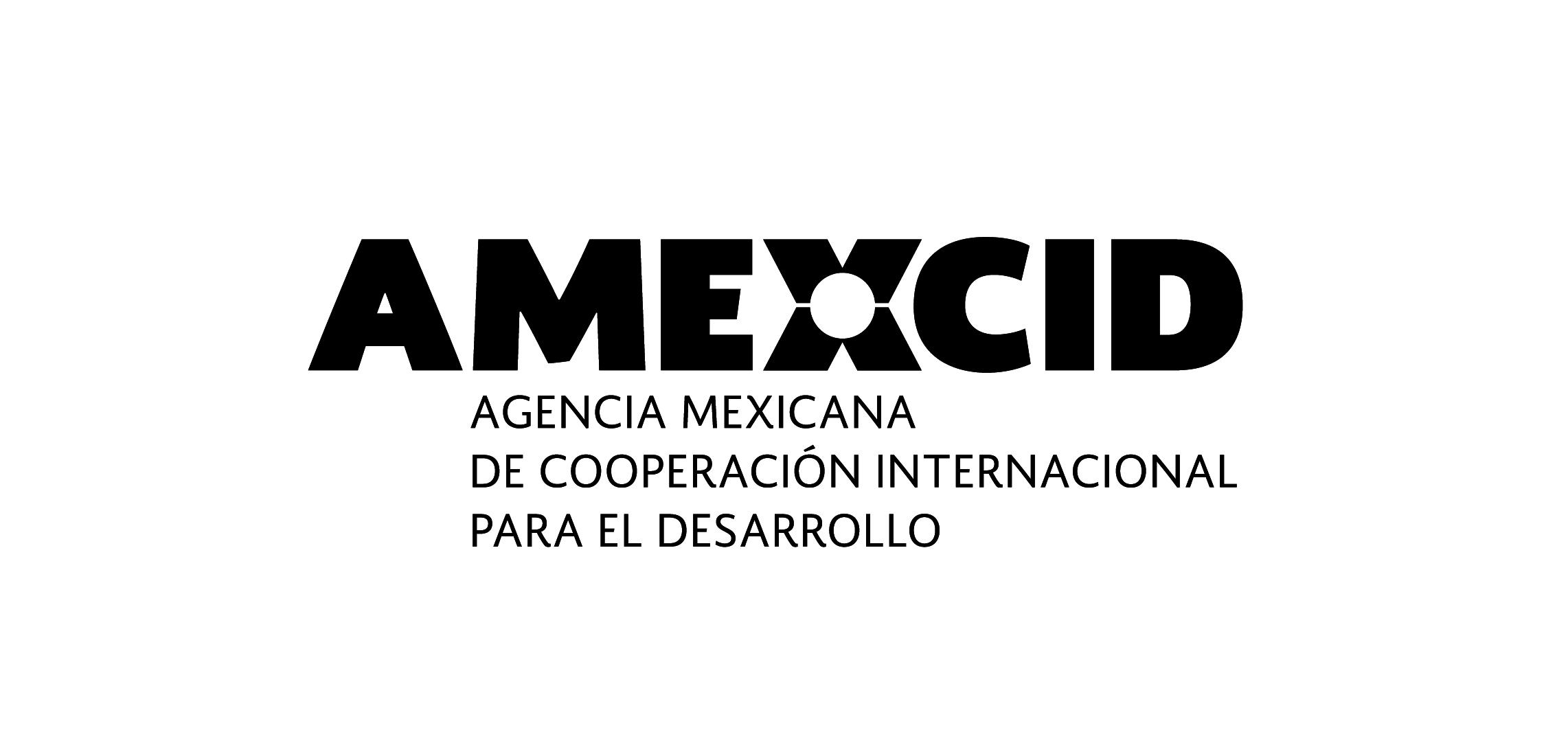amexcid_vector_bn-02